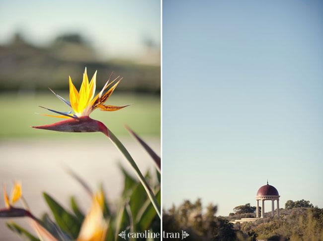 pelican-hill-reception-photo04