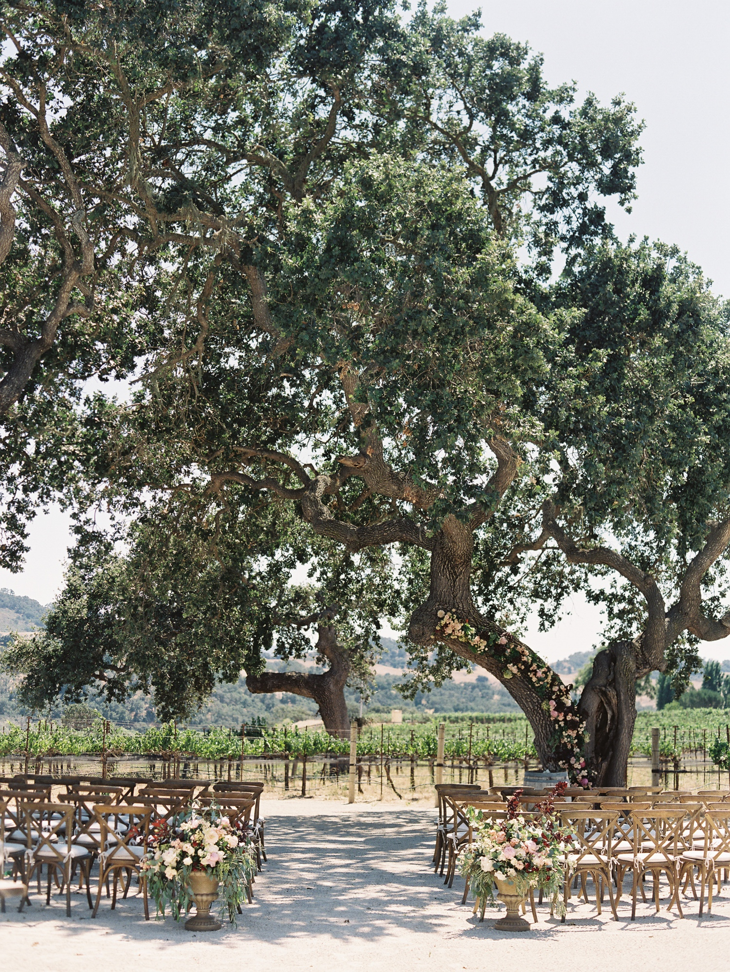 Sunstone Winery wedding ceremony under large oak tree in vineyard