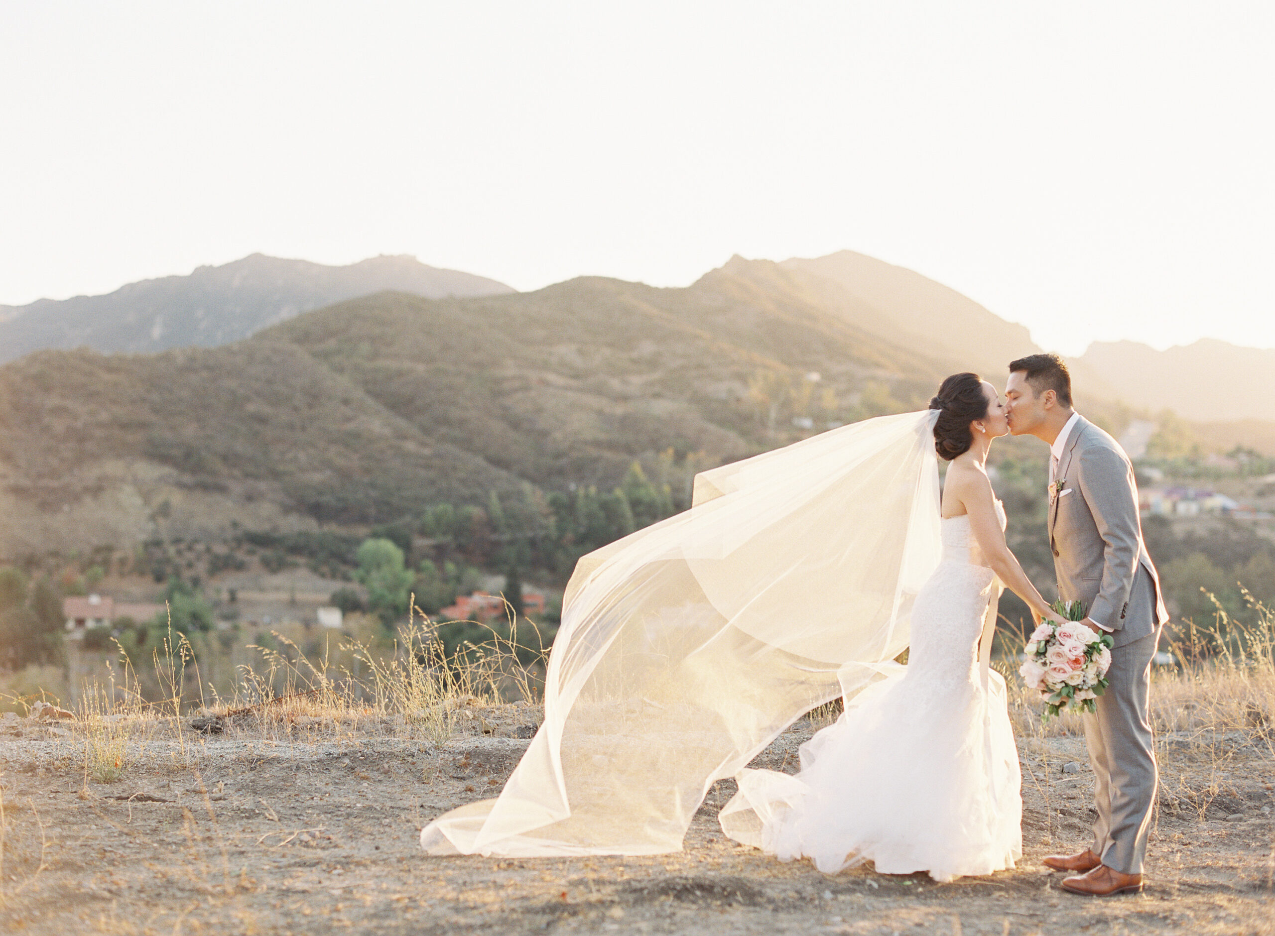 Wedding couple kissing at sunset on rolling hills at Triunfo Vineyard